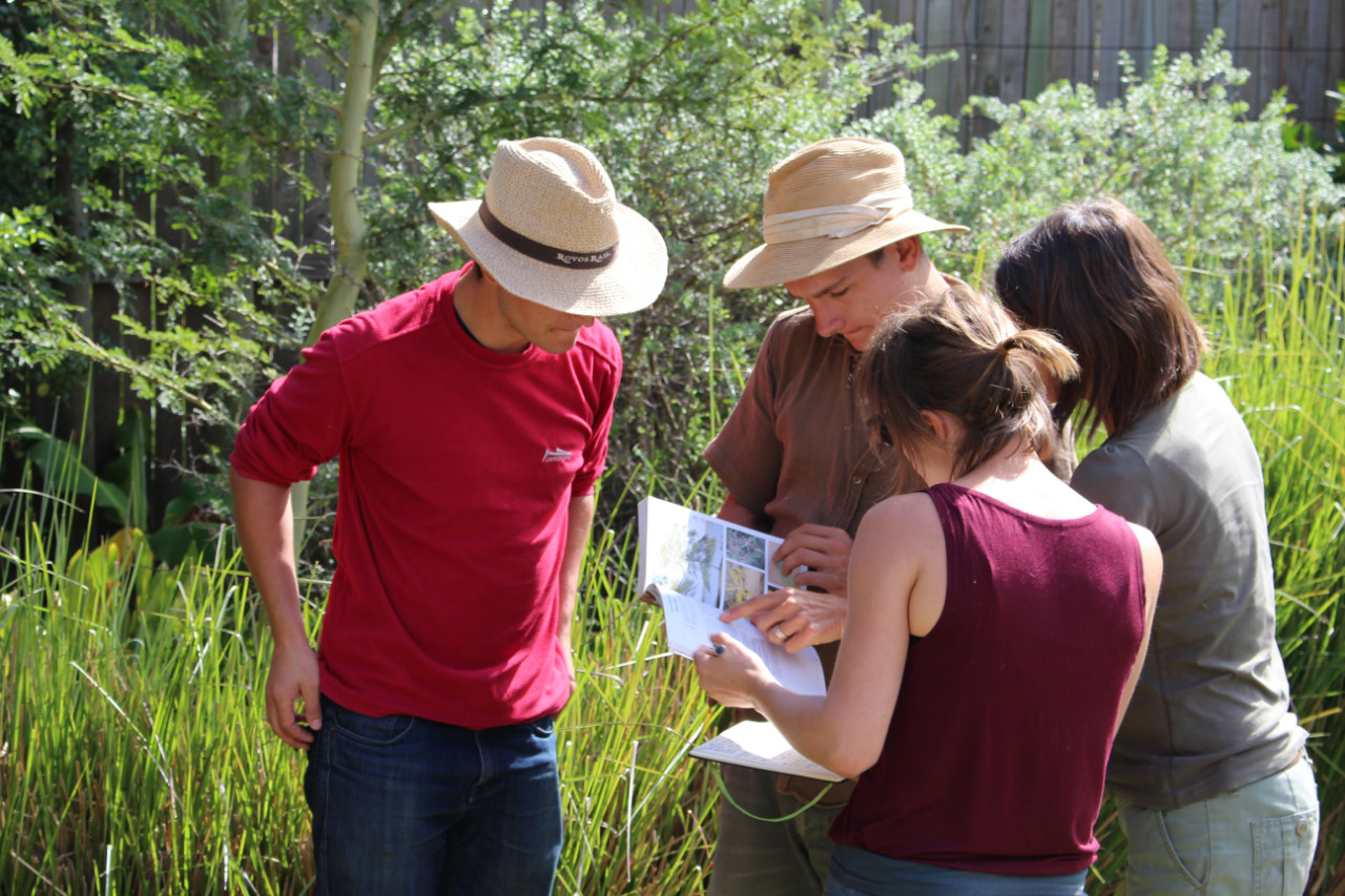 Students collaborating in a RRSI Core Course regenerative restoration practical.